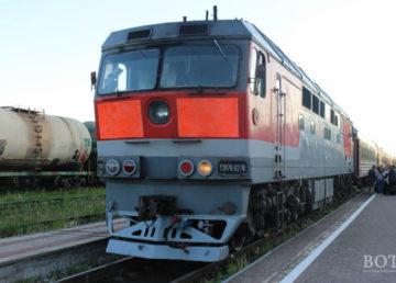 В РЖД сообщают о задержке поездов на участке Санкт-Петербург-Москва из-за упавшего на пути дерева