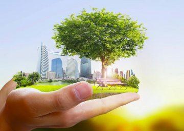 В Тверской области выберут объекты для благоустройства в 2022 году
