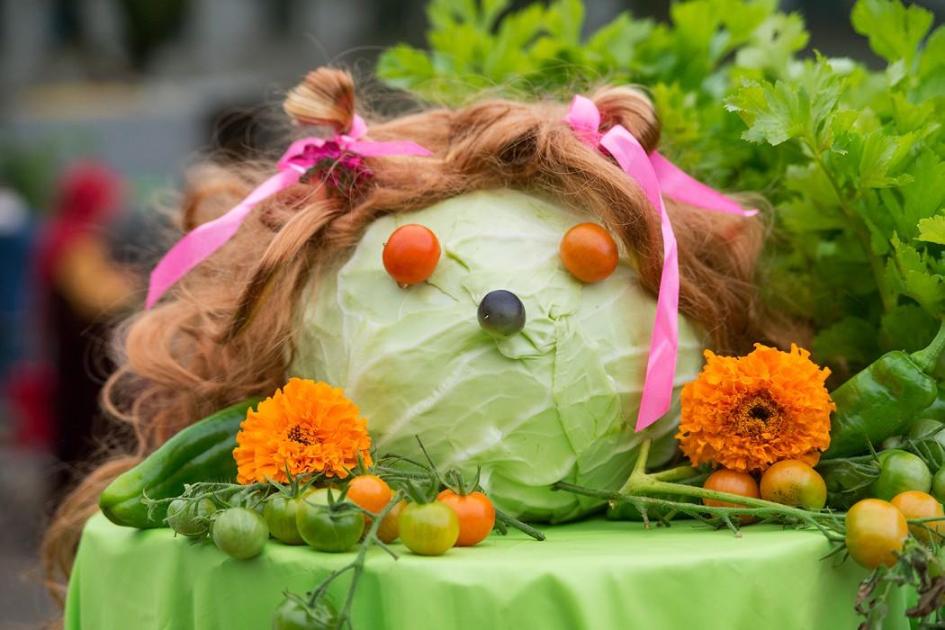 В Тверской области пройдёт ежегодный фестиваль «Барыня капуста»