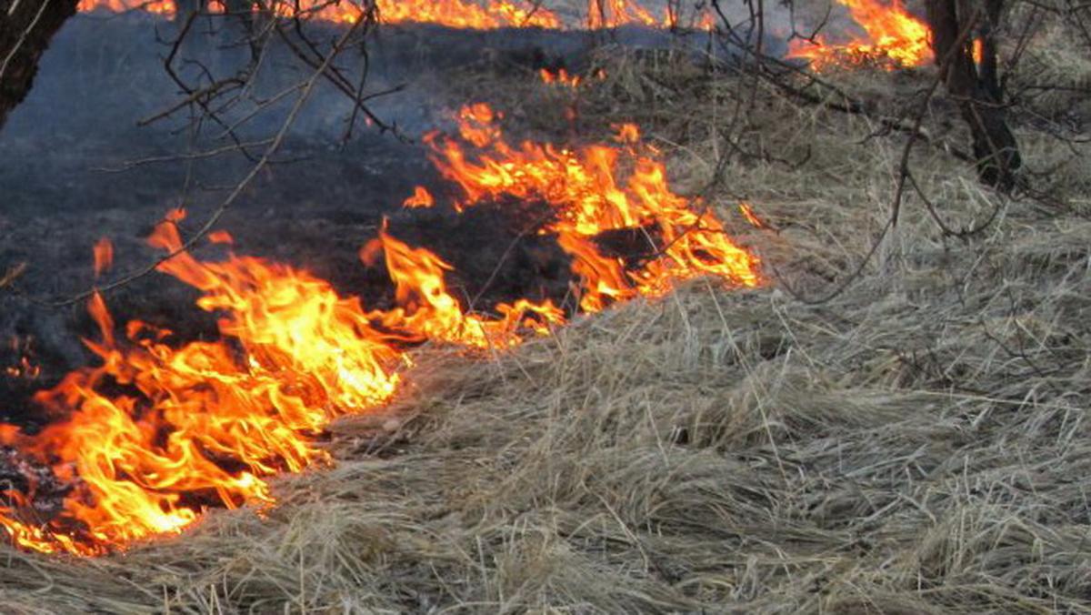 Жители Твери предотвратили несколько серьезных пожаров