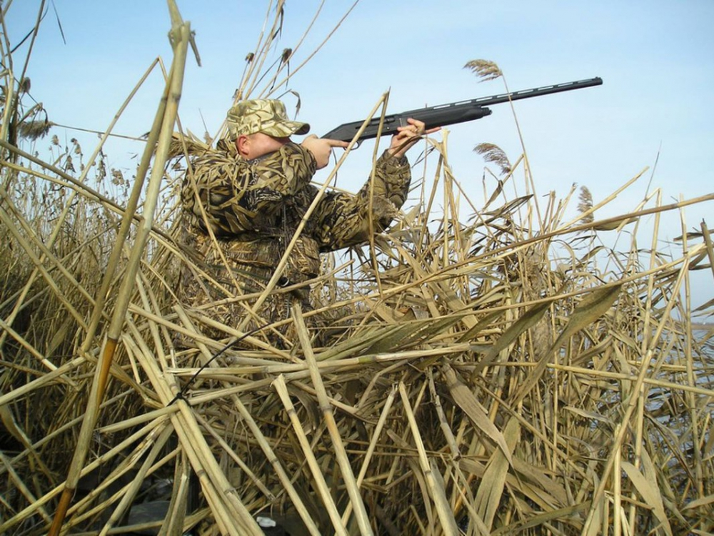 В Тверской области запрет на охоту решили продлить