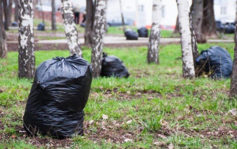 В Тверской области проходит экологическая акция «Зеленая Россия»