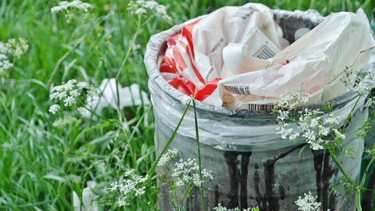 В Твери пройдет экологический субботник