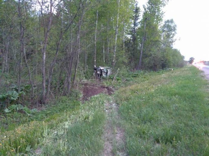 В Тверской области водитель внедорожника пострадал при столкновении с лосем