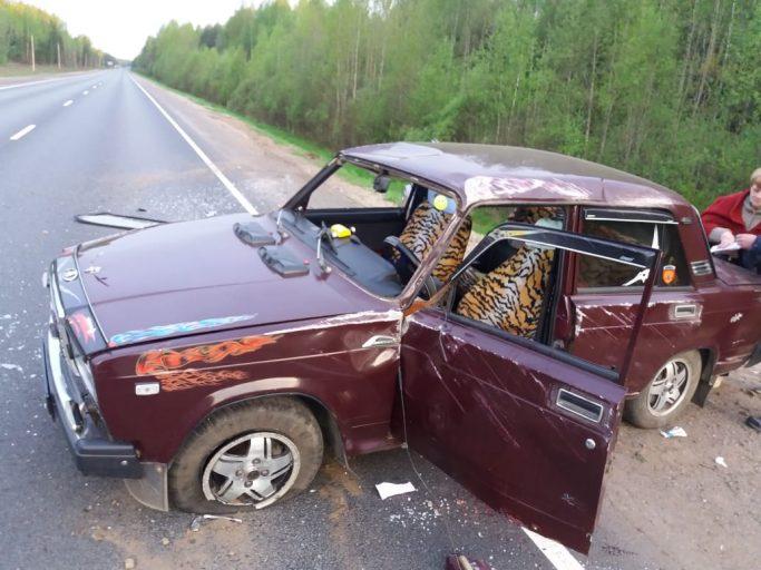 В Тверской области водитель попал в ДТП, объезжая лося