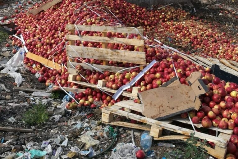 В Тверской области уничтожили более 45 тонн санкционной продукции