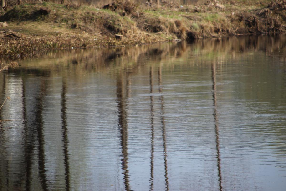 В Твери в Тьмаке утонул молодой мужчина