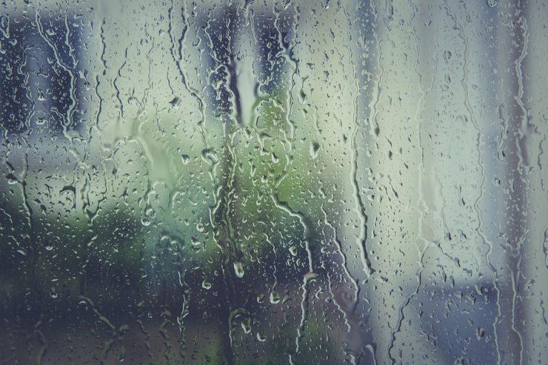Жителей Твери и области предупреждают о сильном дожде