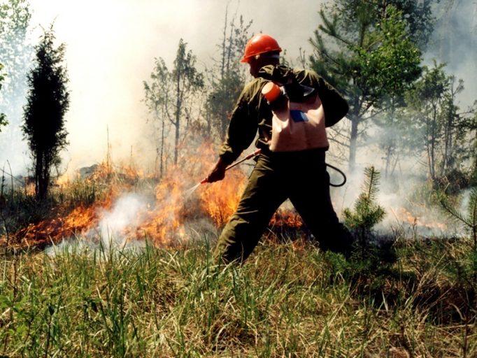 В Тверской области выбран лучший лесной пожарный