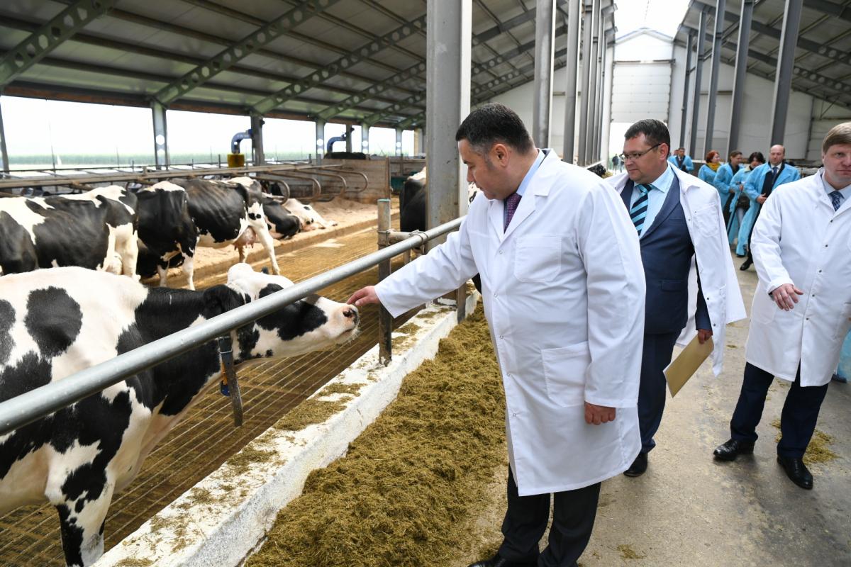 Глава региона посетил ЗАО «Калининское»
