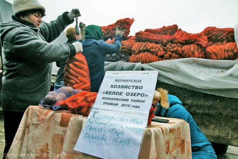 Фермер из Тверской области делает бизнес на картофеле и червях