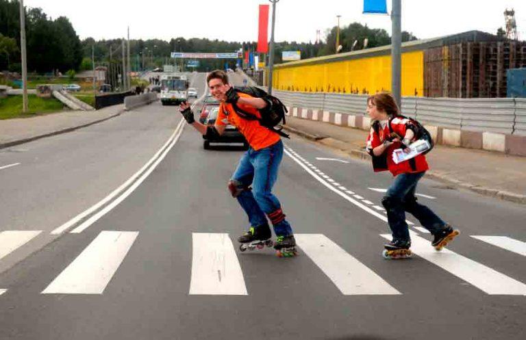 В Верхневолжье реализуется проект «Хищные дороги 2.0»