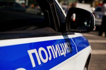 Жестокое убийство лосихи взял под личный контроль губернатор Тверской области