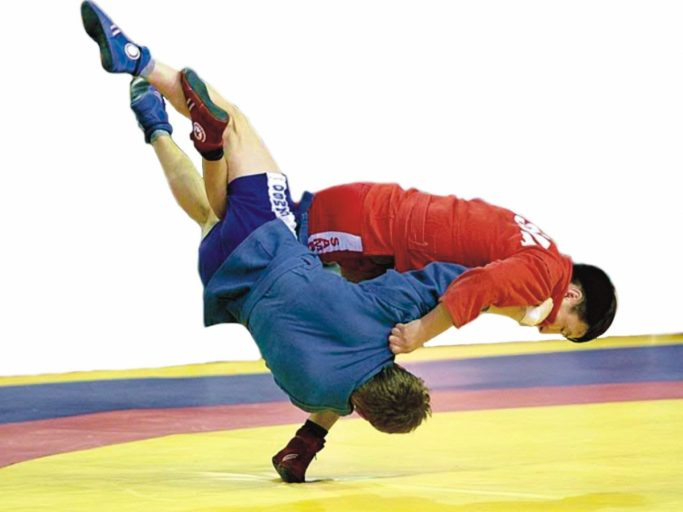Тверская область принимает чемпионат Всемирной федерации боевого самбо