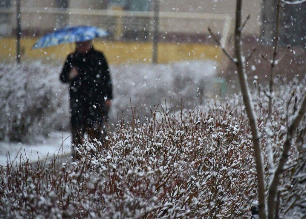 Какую погоду ждать в Твери в ближайшие 8 дней