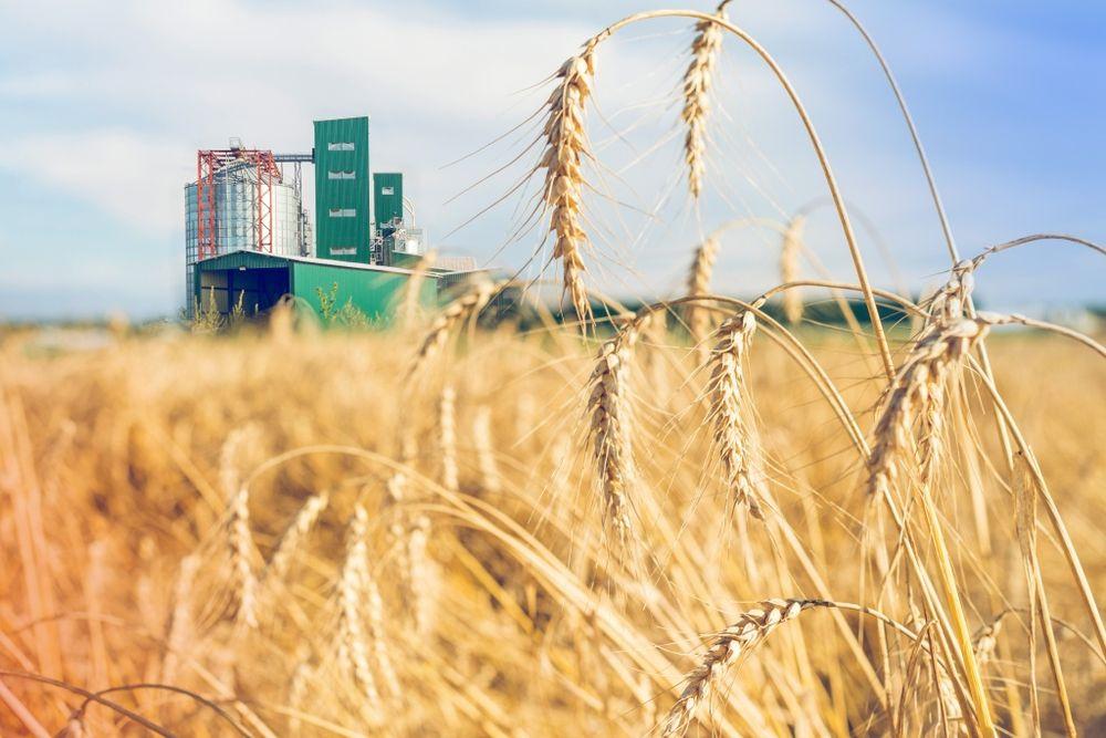 В Тверской области поддержат аграриев