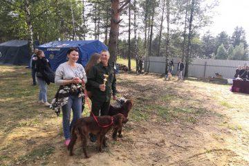 В День охотника в Твери прошла выставка собак