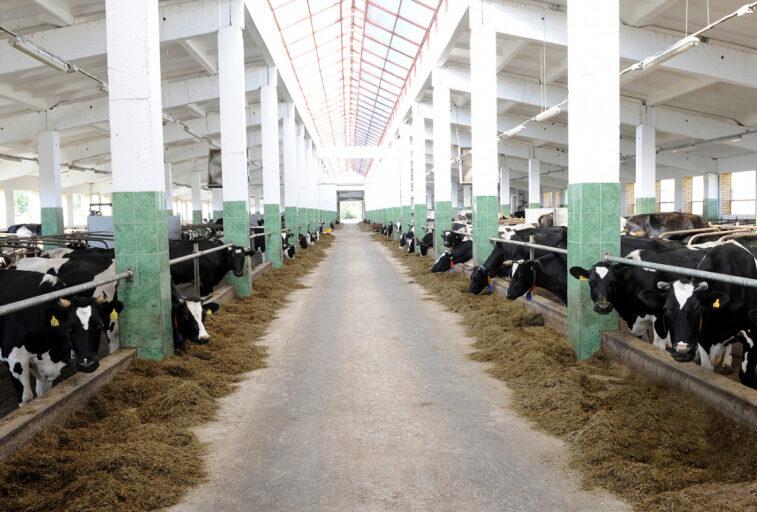 Тверским аграриям окажут финансовую помощь