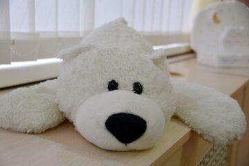 В тверских детсадах прошёл День полярного медведя