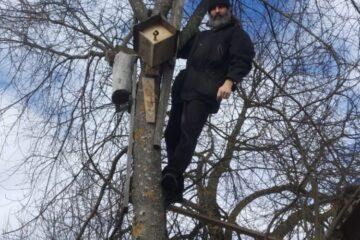 Под Тверью жители сделали фото священника, сидящего на дереве