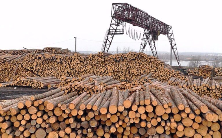 Тверские предприятия леспрома получат льготные займы
