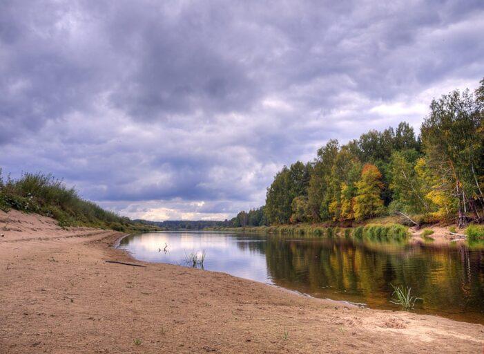 В Тверской области на Мологе утонул мужчина