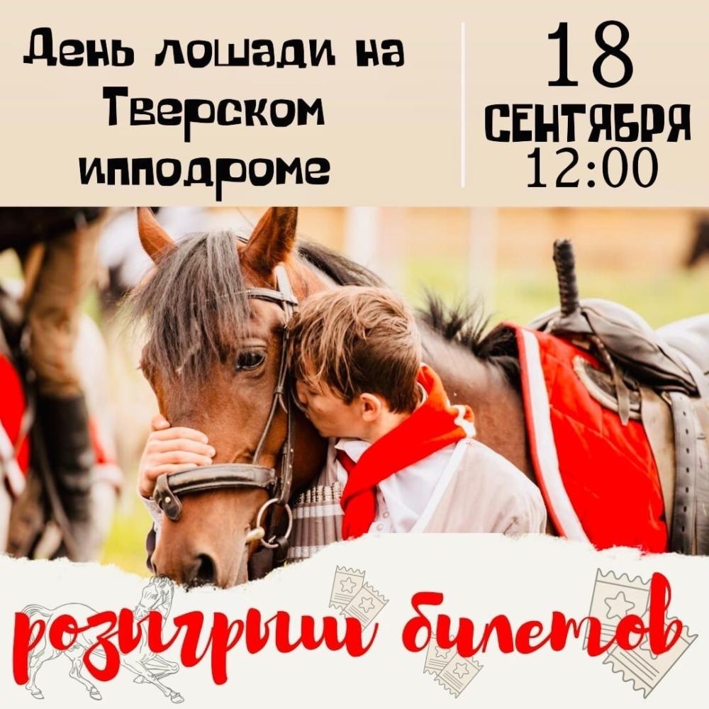 В Твери на ипподроме проходит День лошади